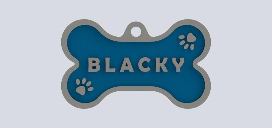 chapita personalizada perro